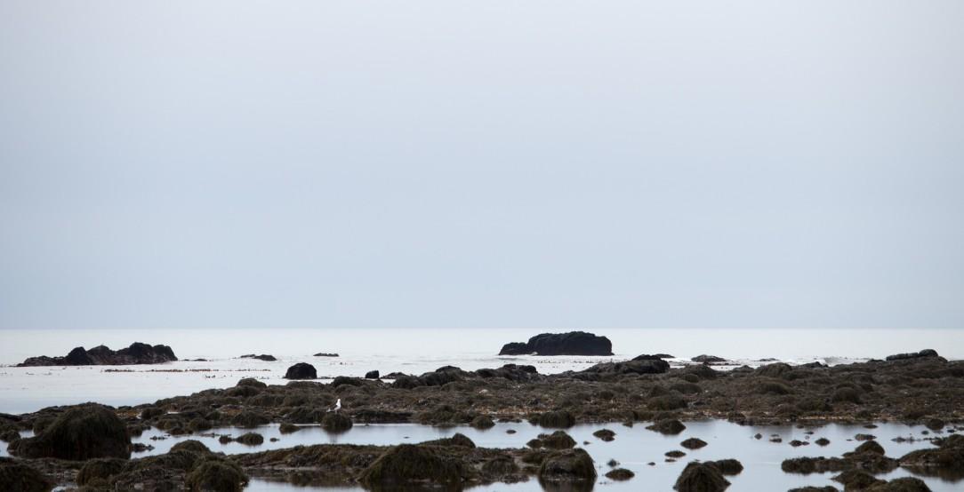 2017-iceland-day5-6-x3
